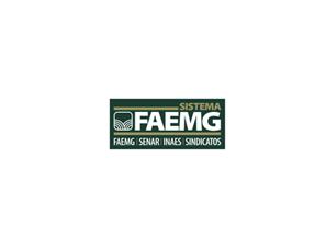 Logo Faemg